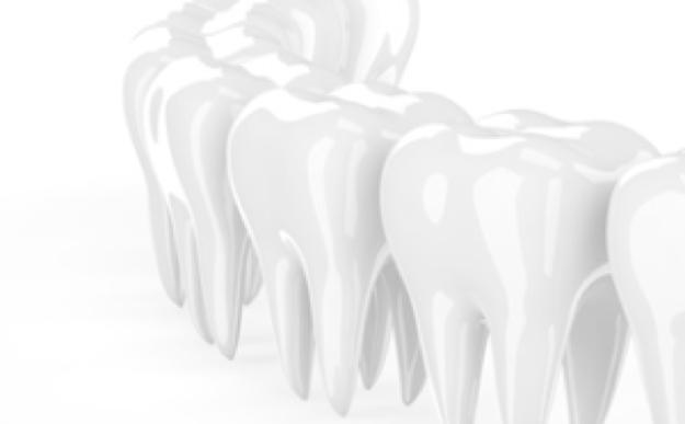移植歯が動かないように固定する